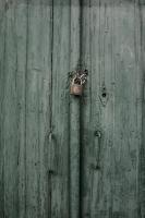 <h2>Green door</h2><p></p>