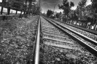 <h2>Train rails</h2><p></p>