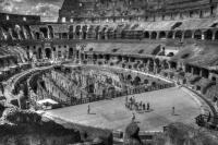 <h2>Colosseum</h2><p></p>